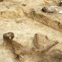 Vorschaubild neolithische Bestattung Brandenburg/Havel